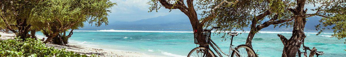Waarom Bali zo'n populaire reisbestemming is